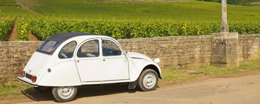 Southern Burgundy